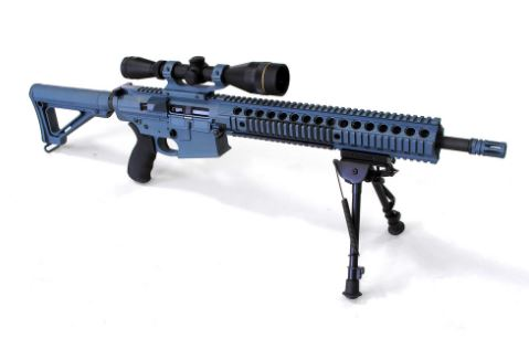 .308 rifle full view