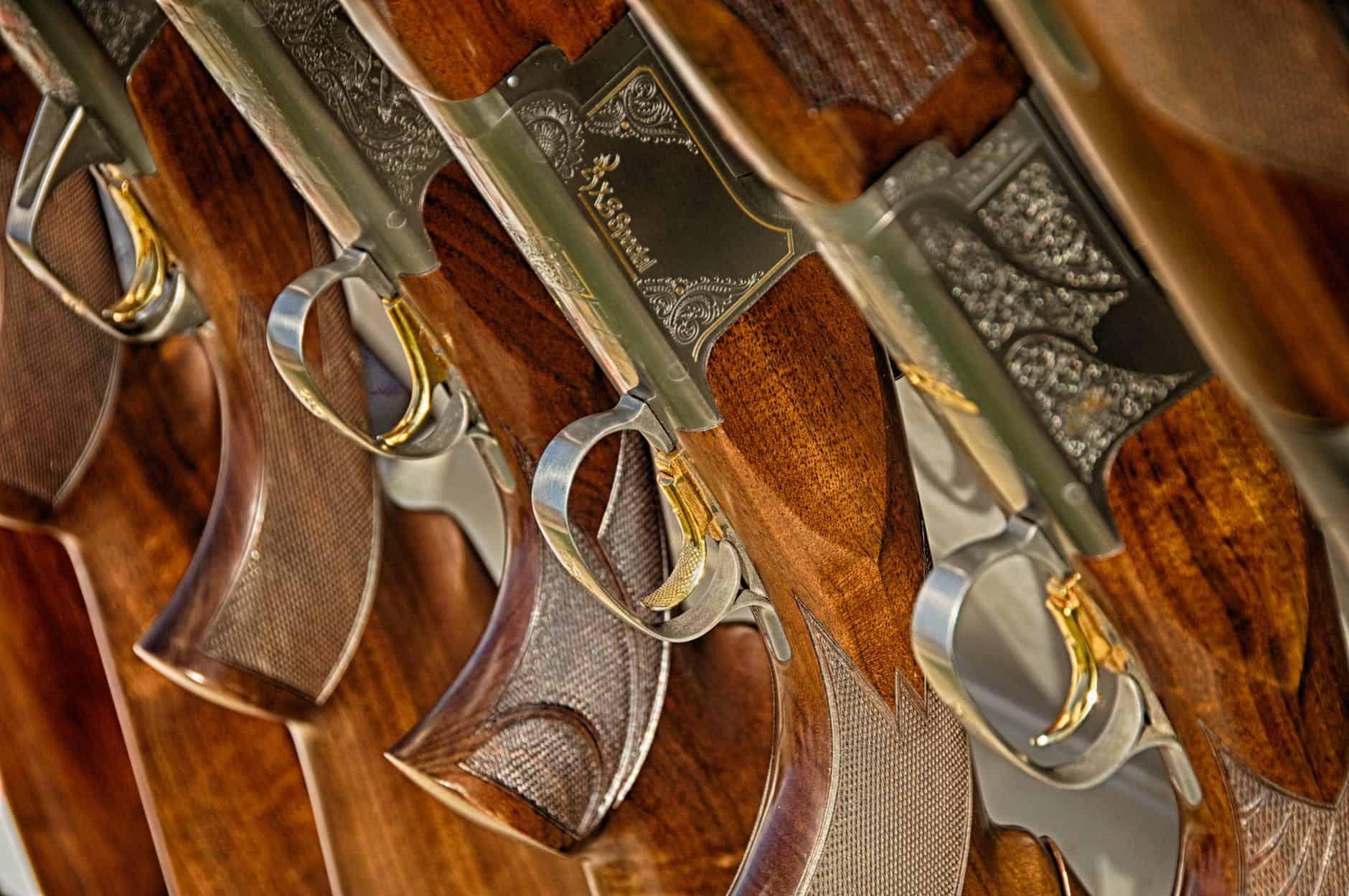 guns-rifle lined up