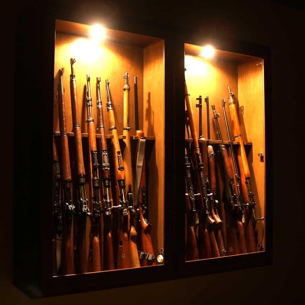 5+ BEST Gun Safes UNDER $1000 - Terrific Options That Dont