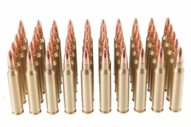 Rainier Arms Munitions Remanufactured .223 Rem 55GR FMJ