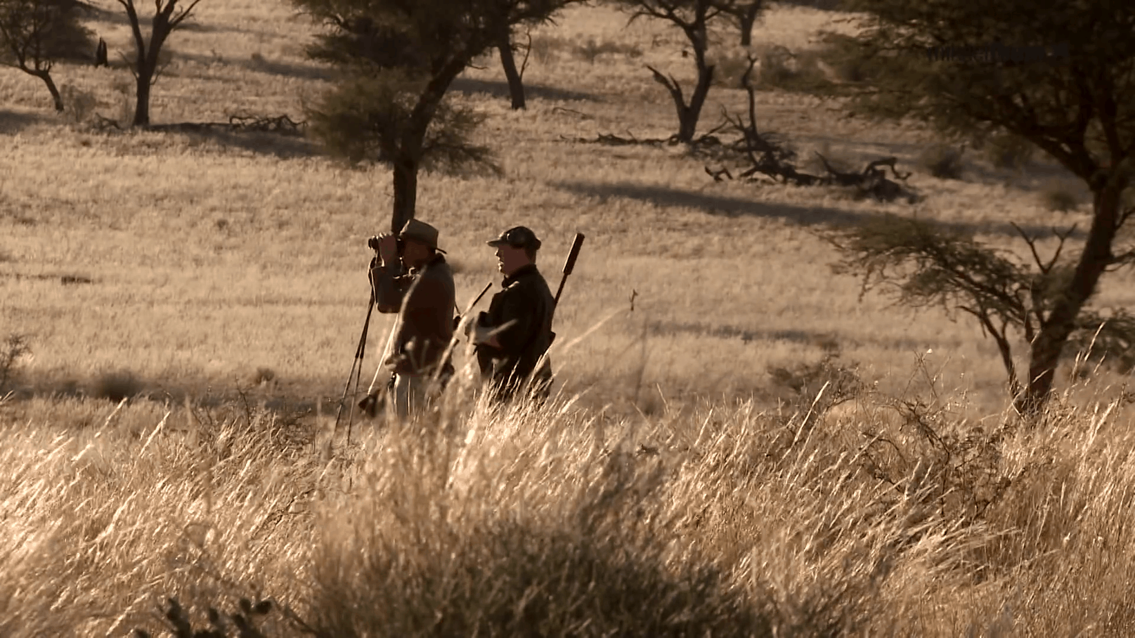 Did COVID Cause a Rise in Hunting