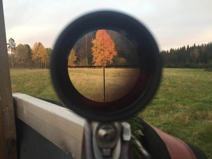 How to Bore Sight Your Rifle (and Why It's Not Quite Enough)