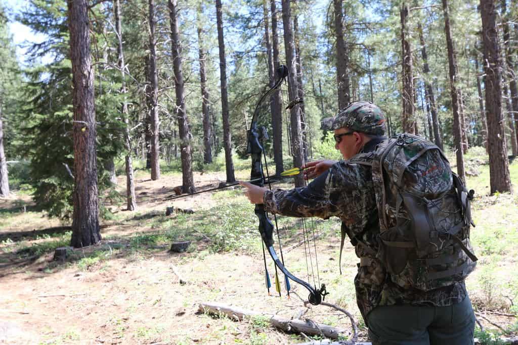 10 Deer Hunting Tips for Beginners