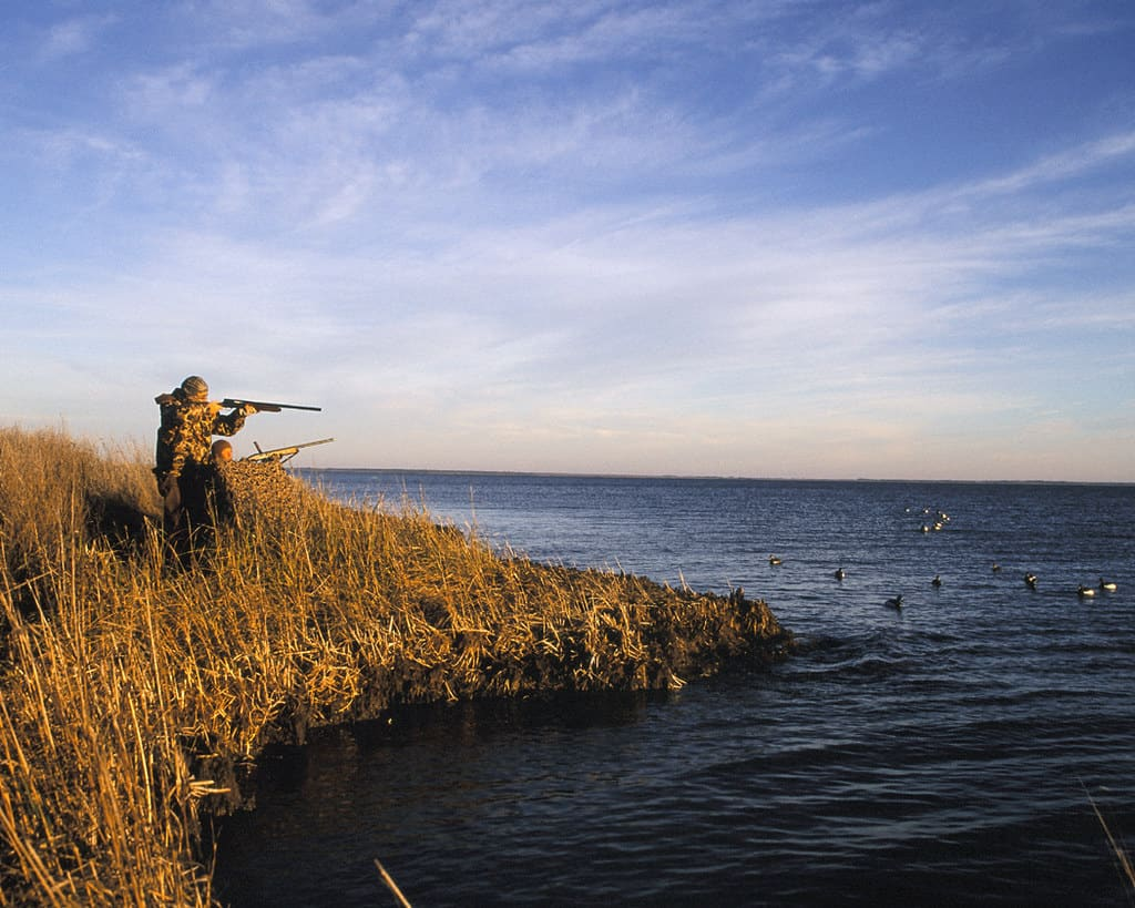 How to Choose the Right Rangefinder for Hunting