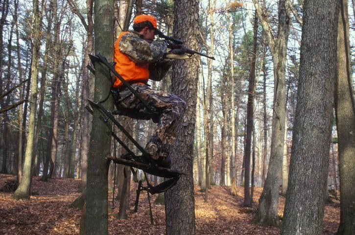 Hunting Safety What You Won't Learn in Your Hunting Safety Course